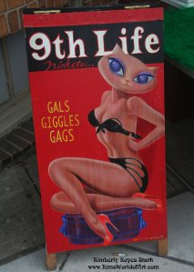 Ninth Life Store Sign