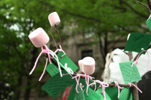 Sakura Matsuri, Washington, DC, April 14, 2012