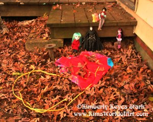 Occupy the Dollhouse: The Aftermath of Hurricane Sandy 1