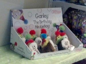 Ganley the Birthday Hedgehog