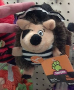 Halloween Hedgehog Toy for Dogs