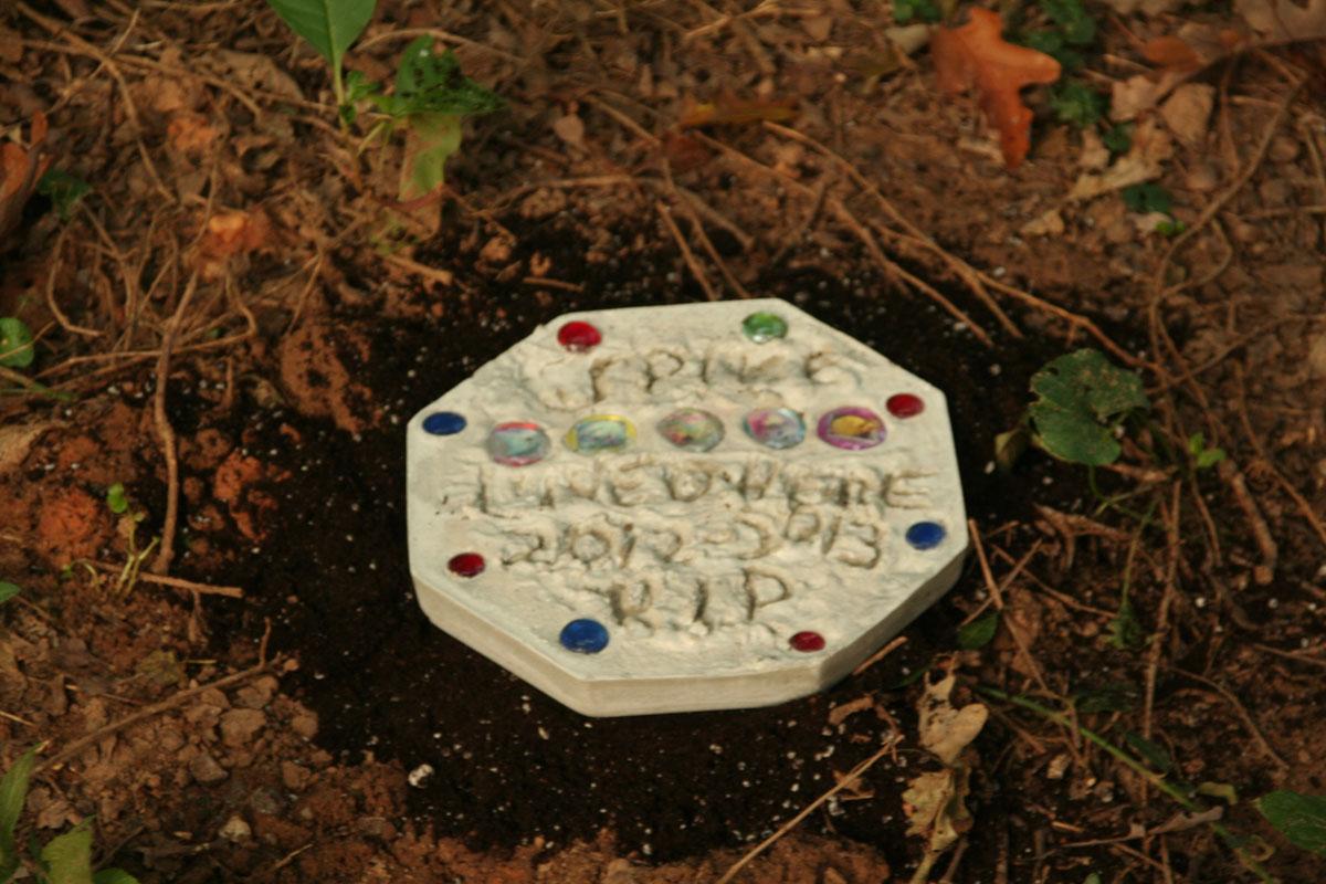 in honor of dead pets sagittarius dolly